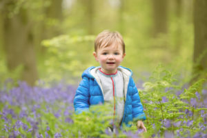 Hampshire bluebells photographer