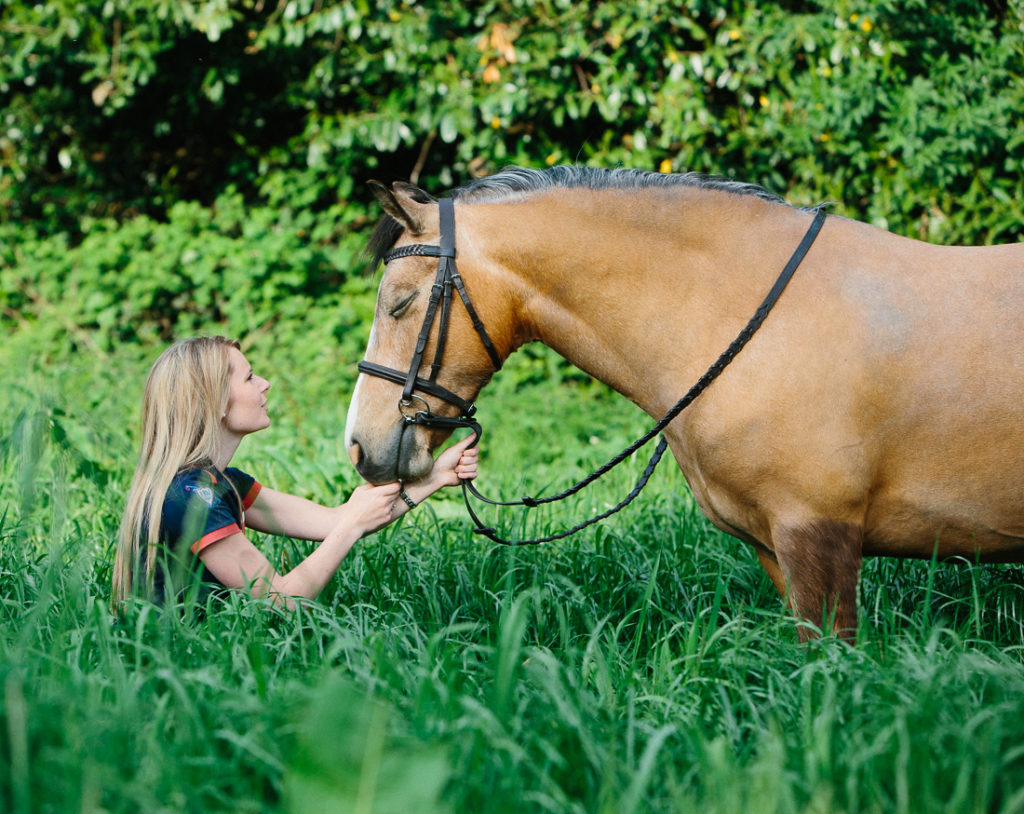 equine photography Southampton