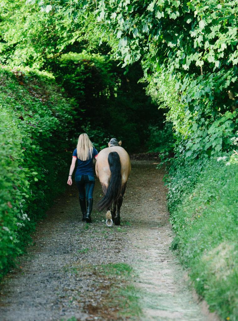 equine photographer Southampton