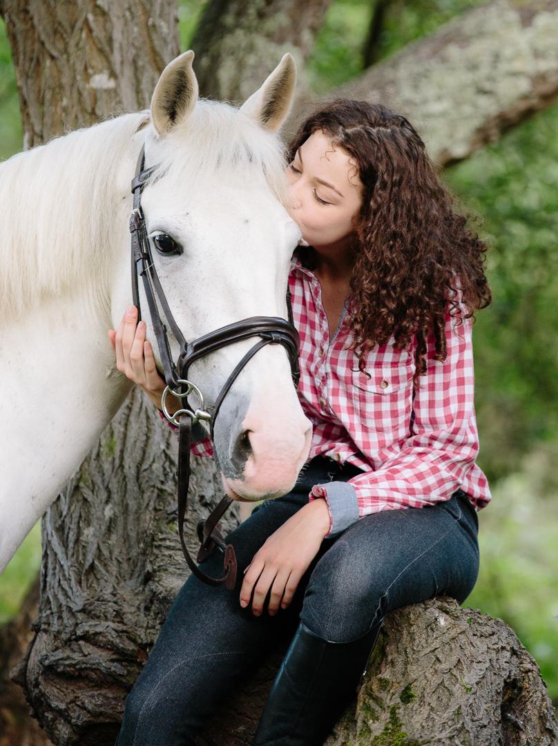 horse photo shoot hampshire