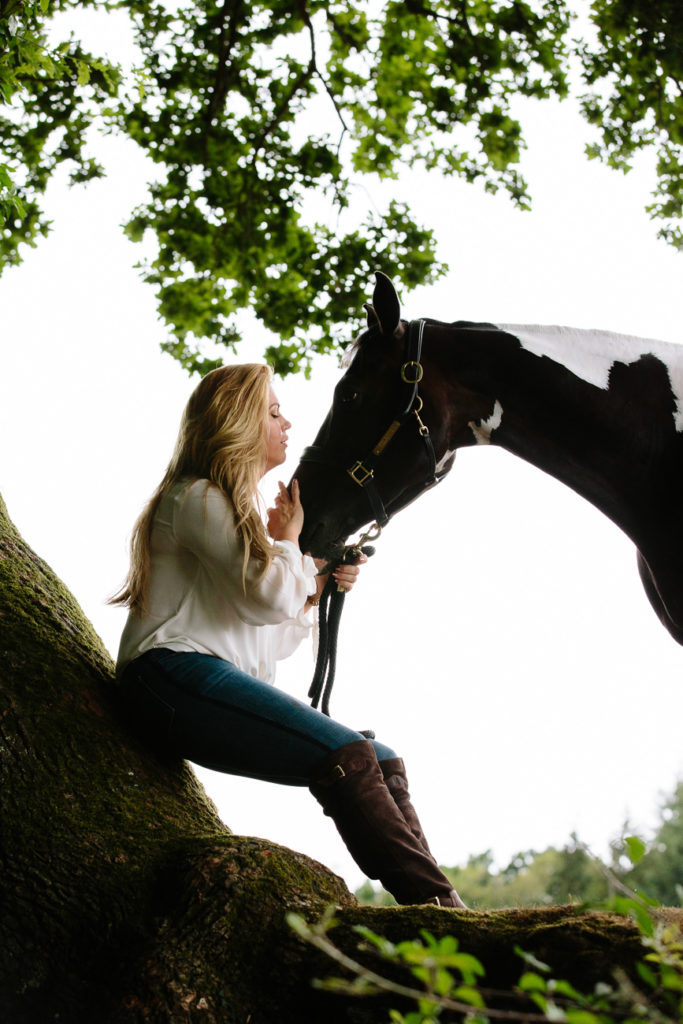 Magical tree and horse New Forest #equinephotographer