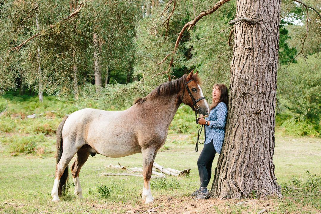 New Forest pony Bramshaw equine photographer #equinephotographer