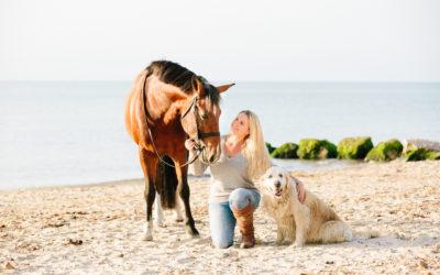 Equine beach photoshoots | Dorset