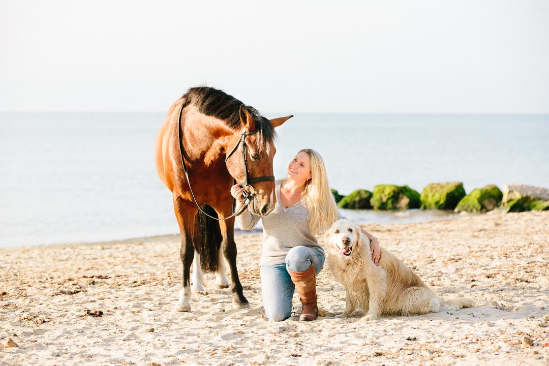 Hampshire Dorset Equine Photographer