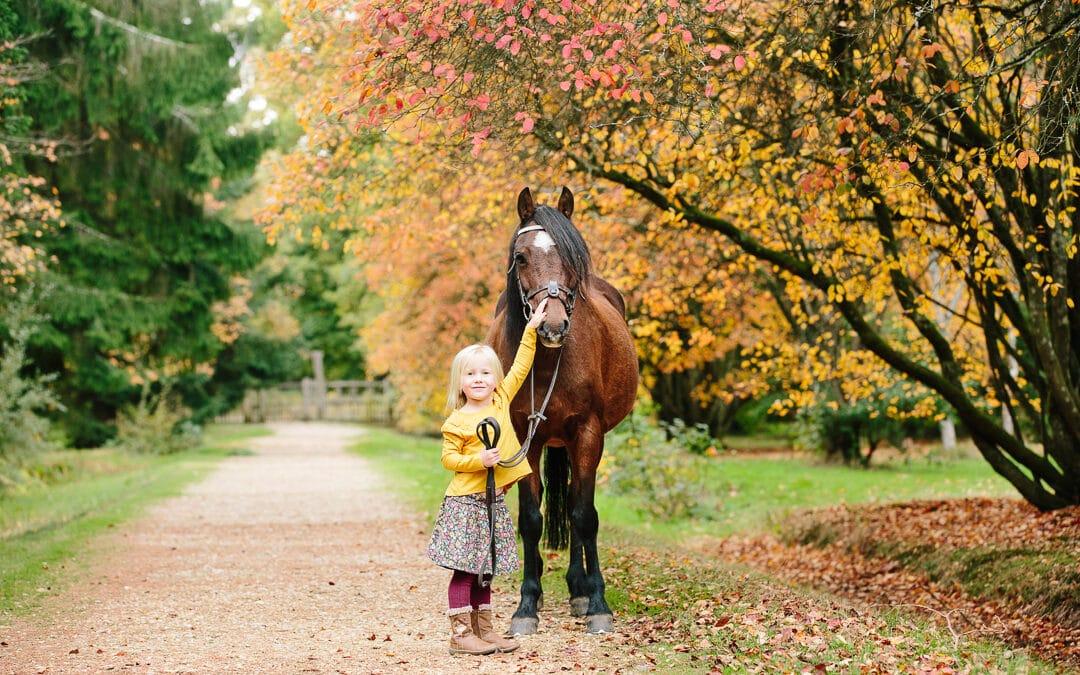Hampshire New Forest Autumn Mini Equine photoshoot
