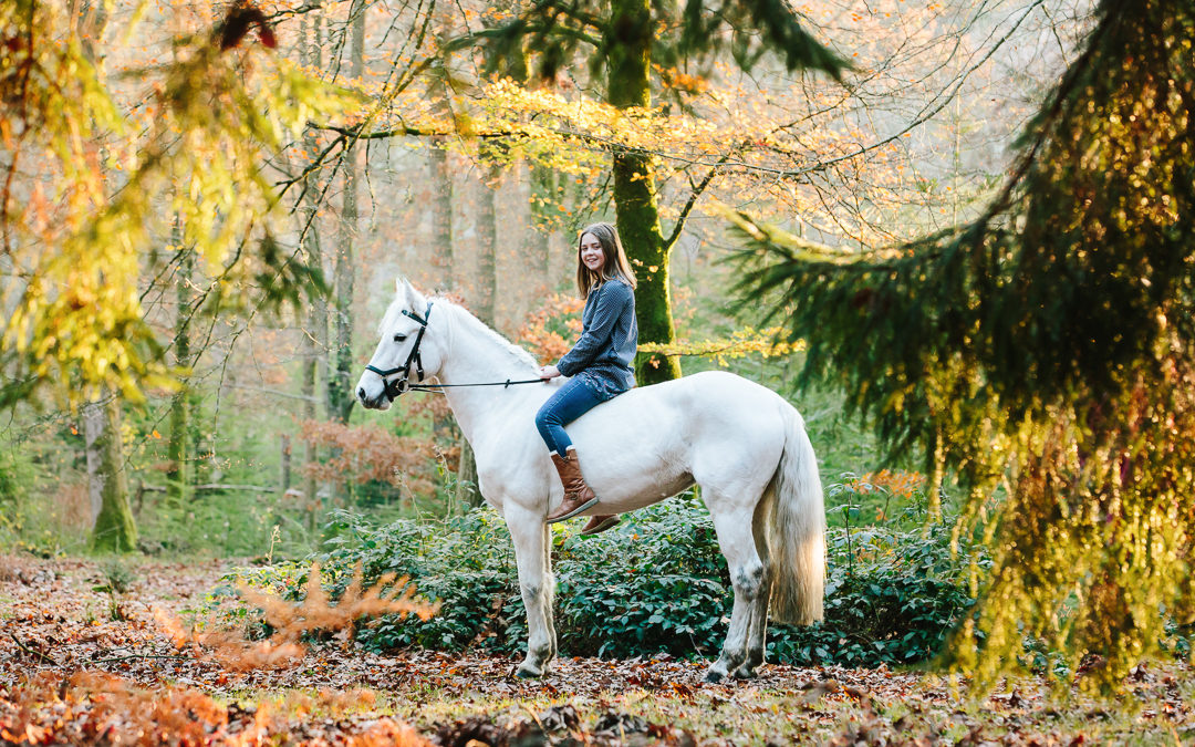 Autumn light and a magical unicorn | Equine Hampshire Photographer