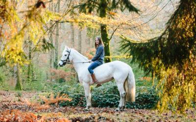 Autumn light and a magical unicorn | Equine Hampshire Photographer