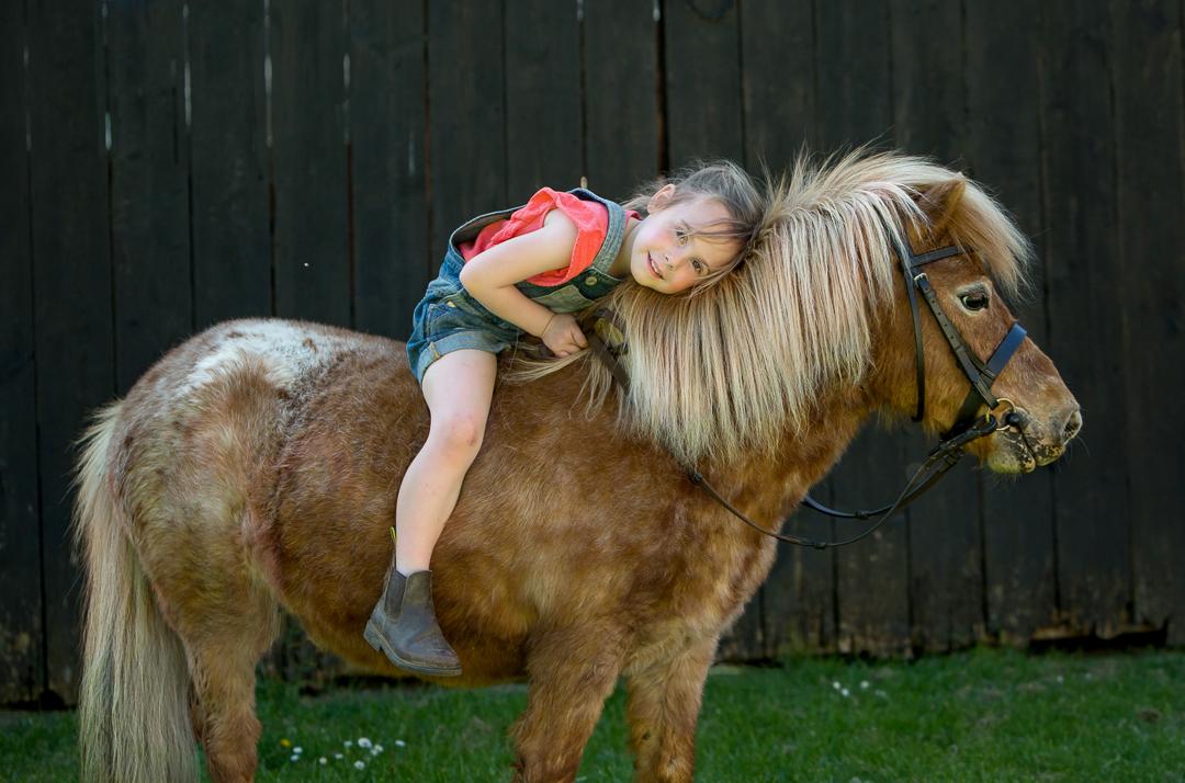 Equine lifestyle photographer Hampshire