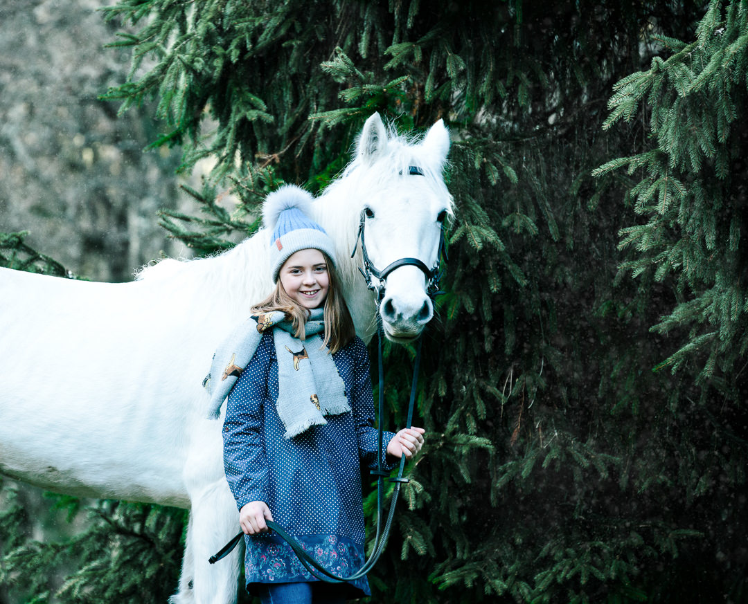 Equine Hampshire Photography Christmas Winter photoshoot