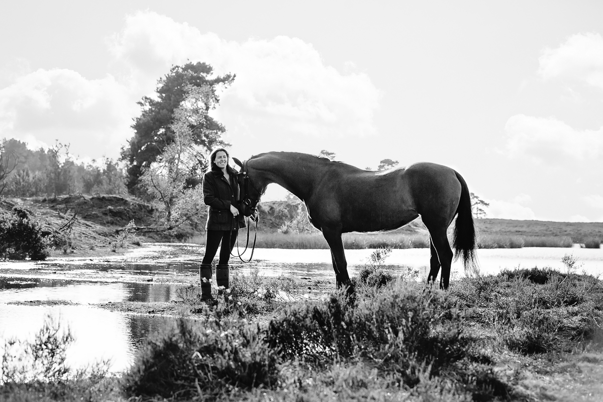 Equine photoshoot Hampshire