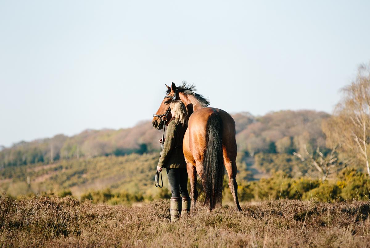 Equine photoshoot Wiltshire