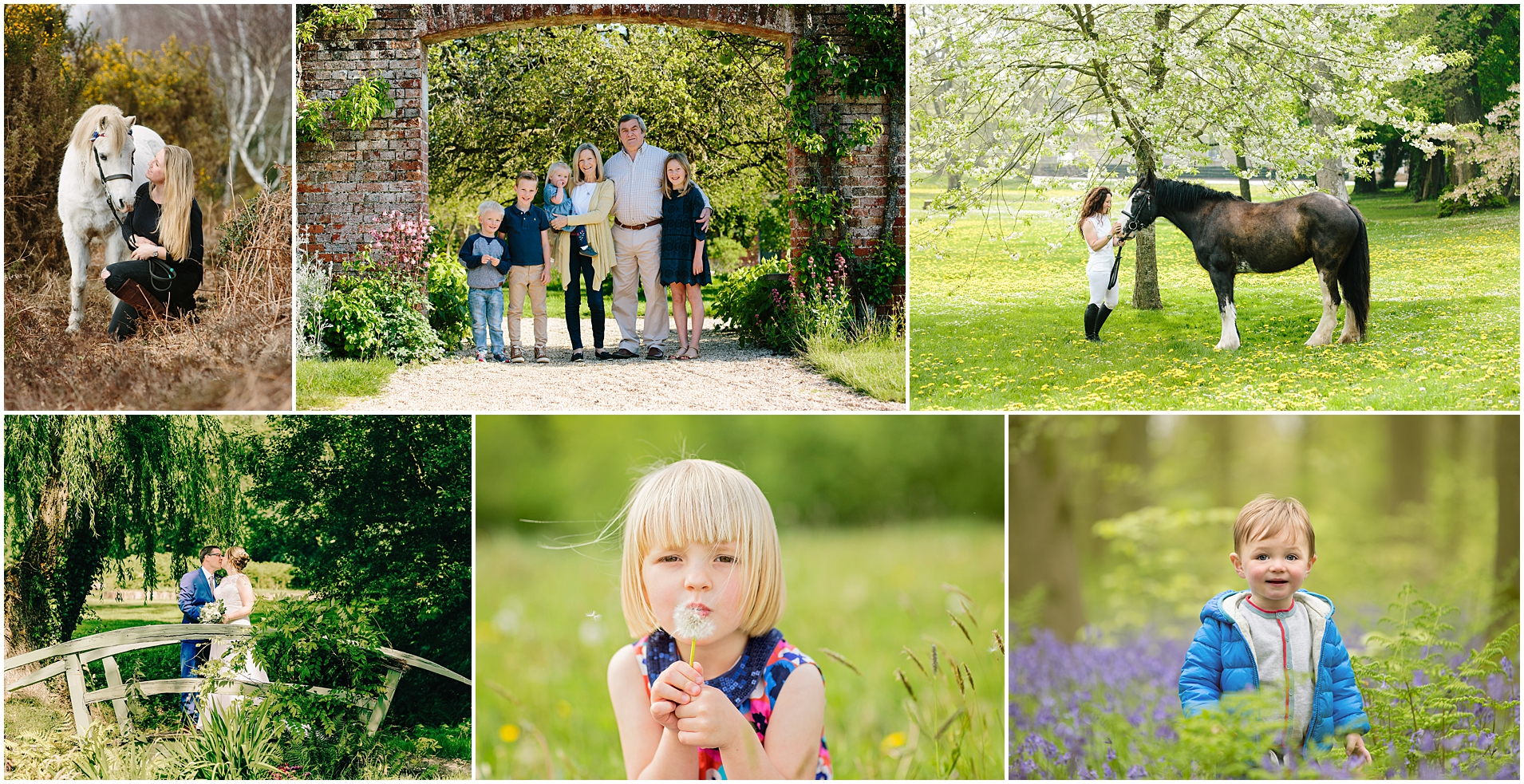 Speing equine and family photography