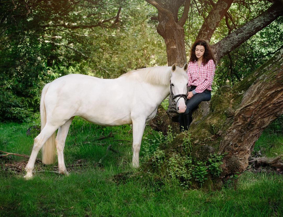 Dorset equine photographer