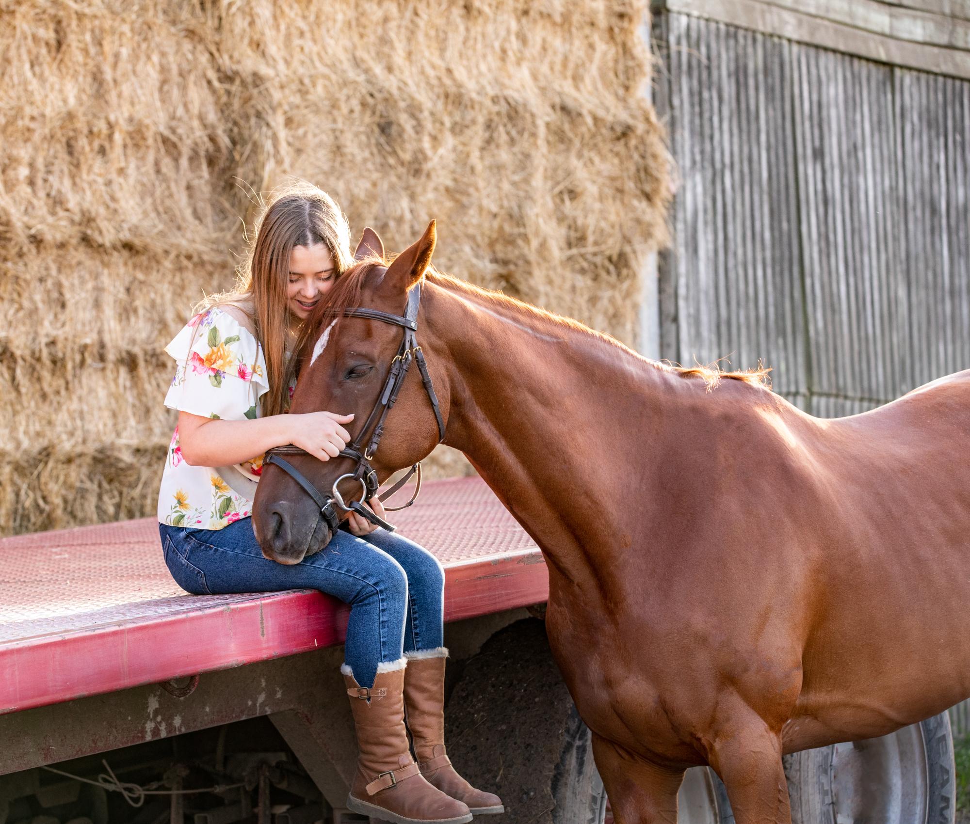 Equine photoshoot Hampshire