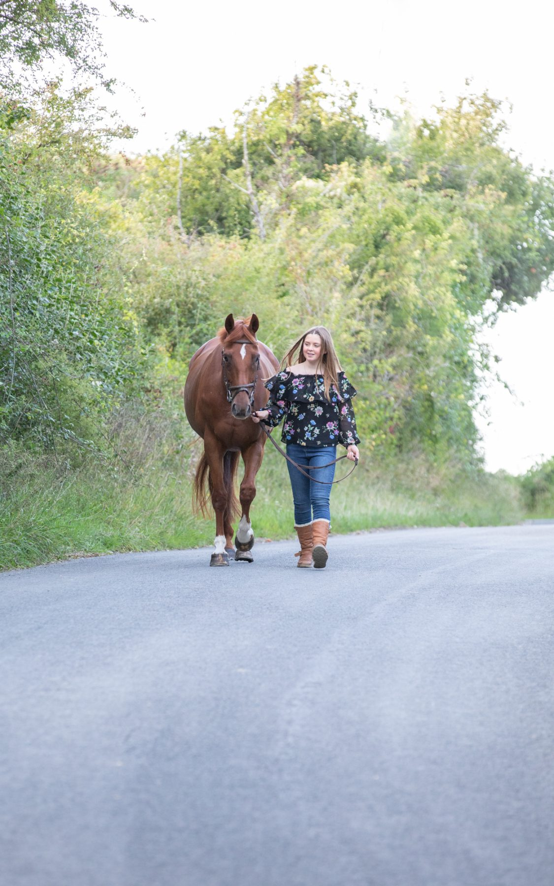 horse photography wiltshire