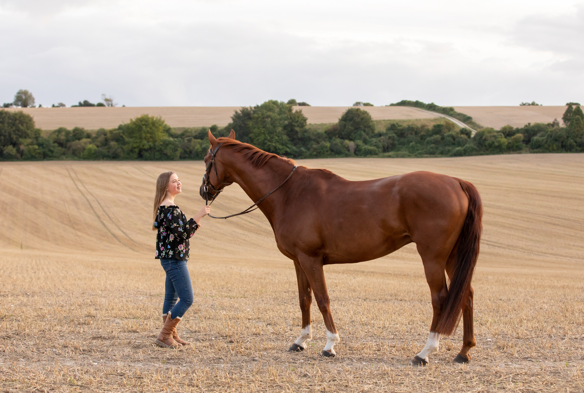 equine horse photographer Hampshire