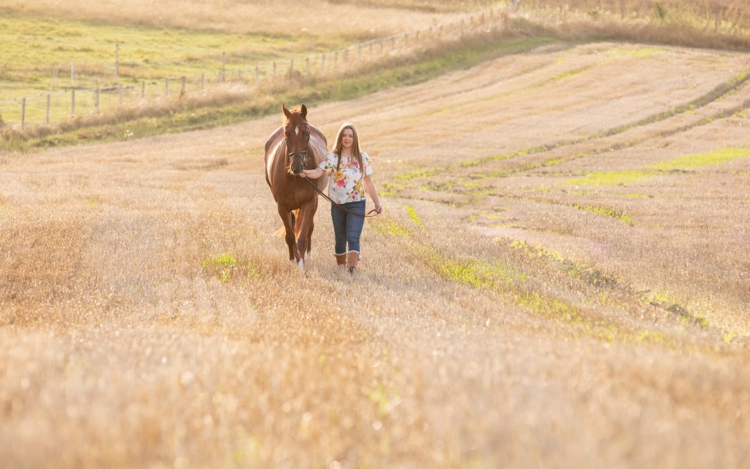 5 Reasons To Book A Photo Shoot With Your Horse