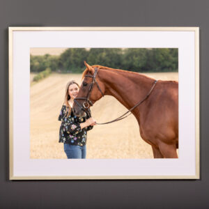 Hampshire equine photographer